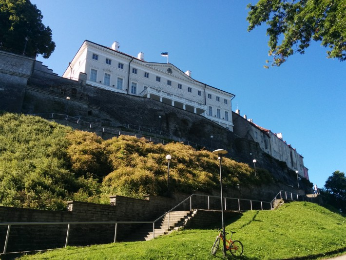 Tallinn // Herr Lutz